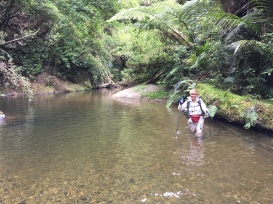Fording the Mangapukahukahu Stream