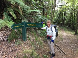 Prior tackling the very rough and challenging Pukatea Ridge Track