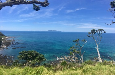 Views back to Whangarei Heads