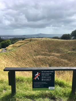 Captivating views from Mount Eden towards Rangitoto Island