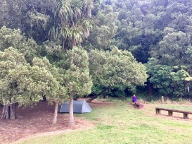 Campsite at Clevedon Reserve