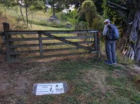 Whangamarino Track