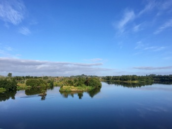 Beautiful reflective Waikato leaving Rangiriri