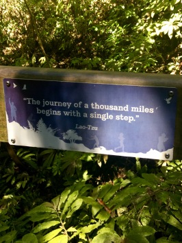 The journey of a thousand miles begins with a single step...LaoTzu