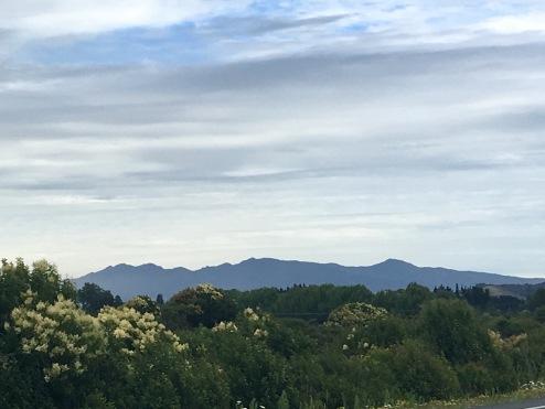 Pirongia Mountain Range