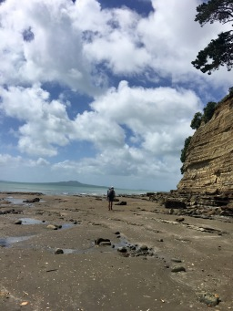Browns Bay, Auckland