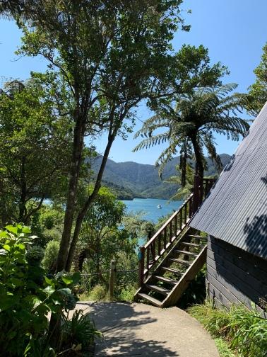 Punga Cove Resort.