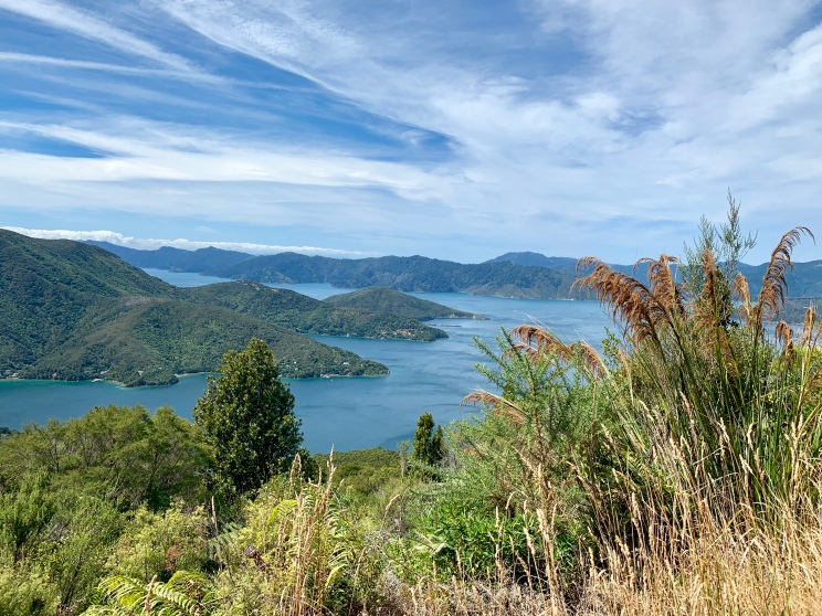 View to Ruaka Bay, Marlborough Sounds. So many beautiful vbay vews